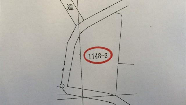 S__12681220